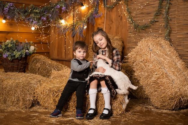干し草の背景に農場の小屋で赤ちゃんヤギと遊んでいる子供たち