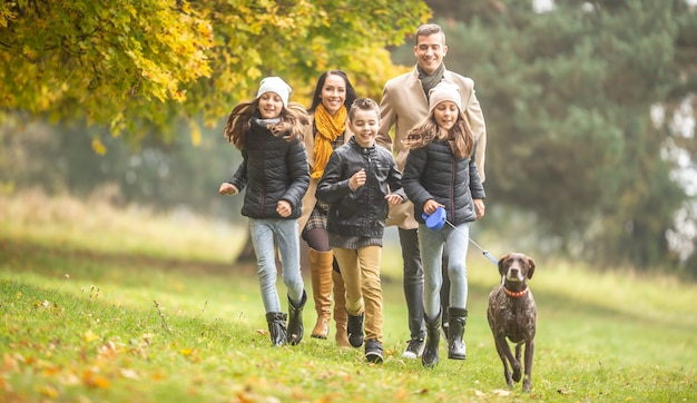 Осенний день дети бегают с родителями и немецким короткошерстным пойнтером на свежем воздухе.