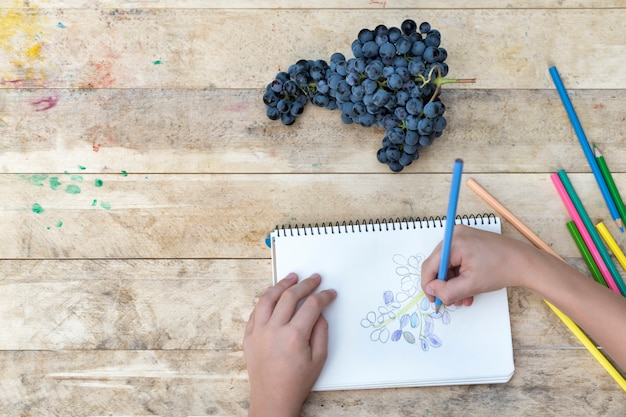 Children's drawing, grapes and colored pencils. wooden table. top view