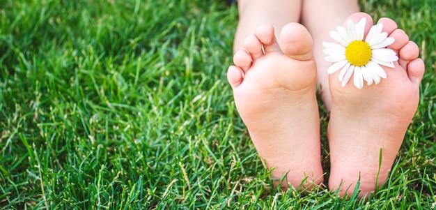 Детские ножки с ромашкой на зеленой траве. выборочный фокус. природа
