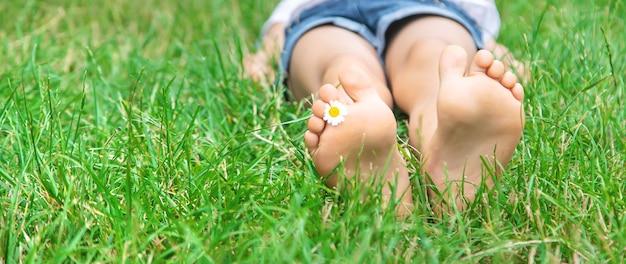 緑の芝生にカモミールで子供の足。
