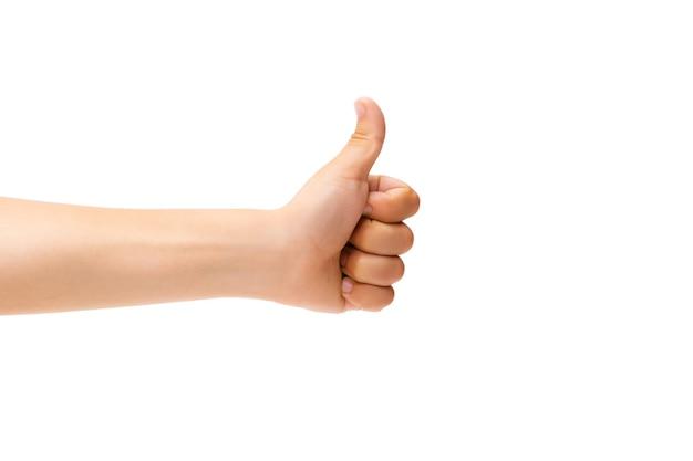 白い背景で身振りで示す子供の手