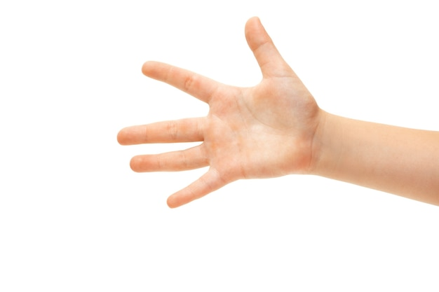 白で身振りで示す子供の手