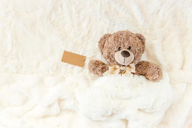 어린이 장난감은 담요 아래에서 잔다. 복사 공간. 선택적 초점.