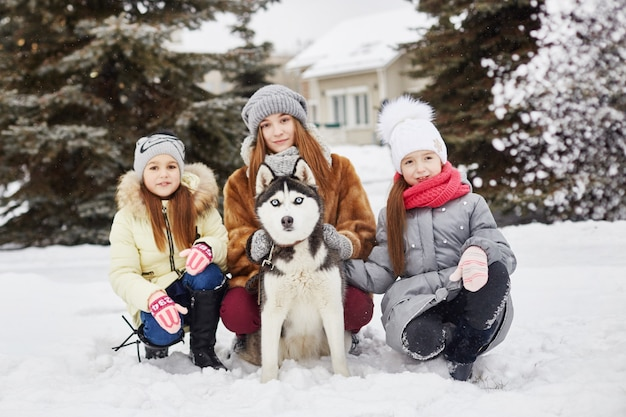Children sit in the snow and stroked dog husky. children go out and play with husky dog in winter. walk in the park in winter, joy and fun, dog husky with blue eyes. ,  dec