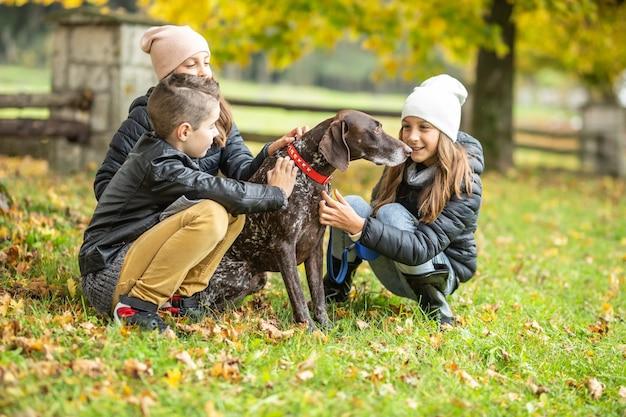 Дети гуляют с немецким пойнтером на открытом воздухе, гладят собаку в осенний день.