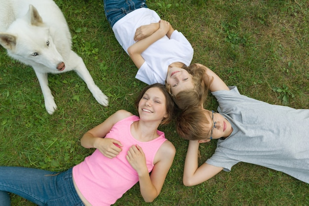 Children with dog on green grass, top view