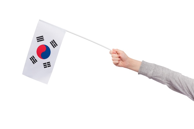 Childrens hand holds flag of south korea isolated on white background.