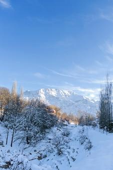ウズベキスタンの晴れた晴れた日の冬に雪に覆われたチンガン山