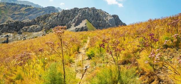 ウズベキスタン、タシケント市近くのチムガン山脈