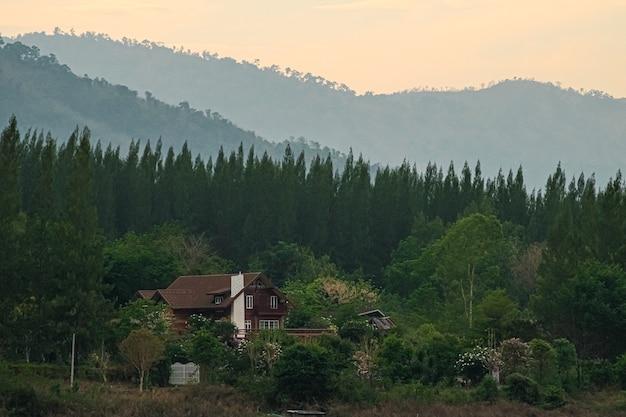 배경에 산과 소나무 숲에 굴뚝 집