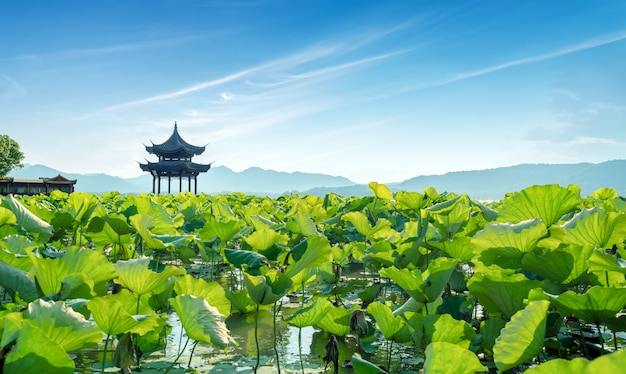 China hangzhou west lake landscape