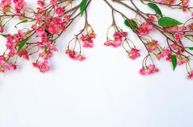 Китайские цветы расцвета для украшения китайского нового года на белом фоне.
