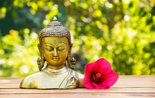 Chinese buddha sculpture and pink hibiscus flower on green natural background
