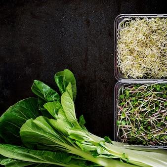 白菜と黒のテーブルのマイクログリーン
