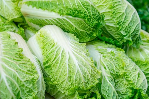 市場で販売されている白菜。野菜。