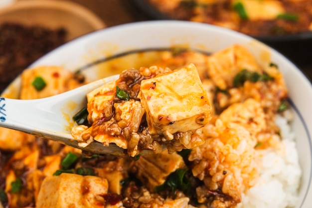 Chinese cuisine: tofu and spicy minced rice