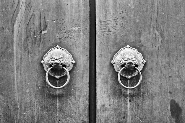 Chinese door with a lion or dragon head