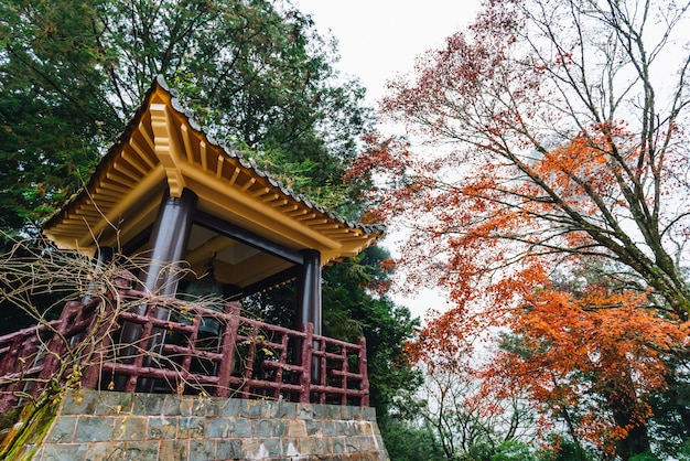 Chinese gazebo with trees and maple trees in alishan.