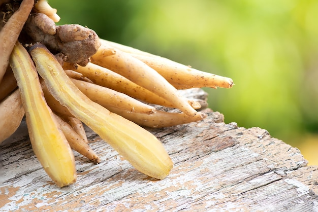 Chinese ginger or galingale rhizome on nature background.