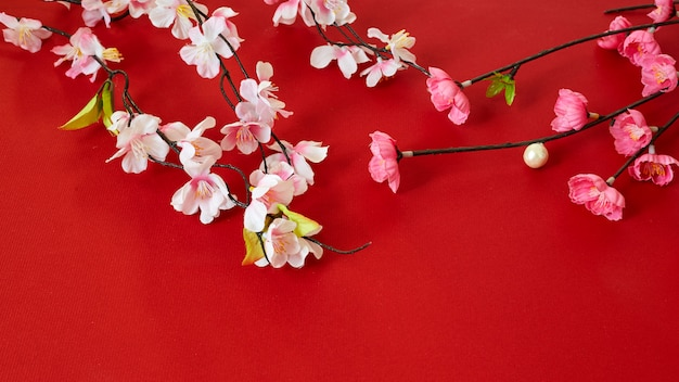Chinese new year festival plum flowers