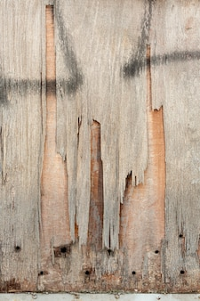 Chipping wood with holes and spray paint
