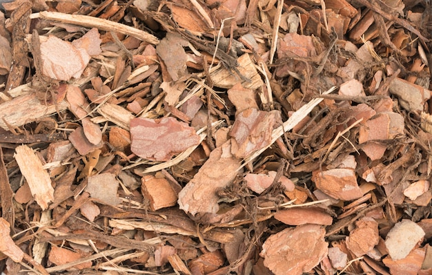 Chips of pine bark background. wood fibers and chips texture
