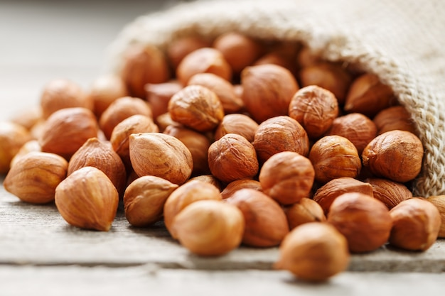 Chiselled hazelnuts in a bag of burlap on a gray wooden table