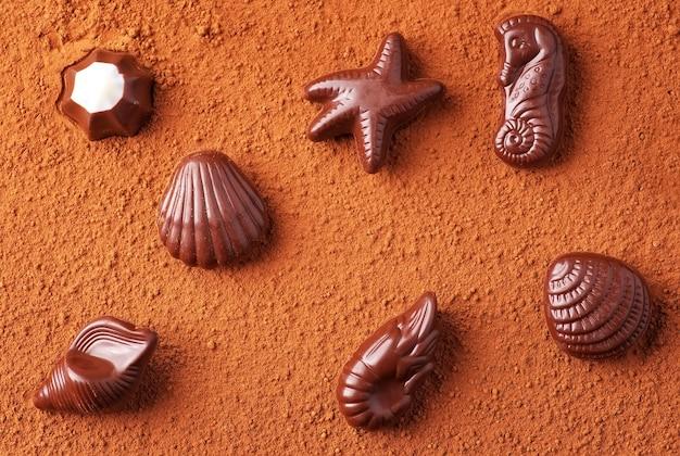 코코아 가루의 배경에 바다 주제에 초콜릿 사탕