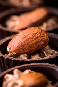 Chocolate close-up. various chocolate pralines