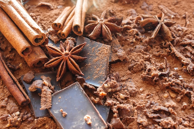Chocolate, cocoa, cinnamon and star anise. selective focus.