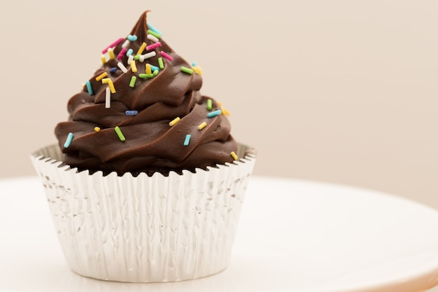 Chocolate cupcake with sprinkles.