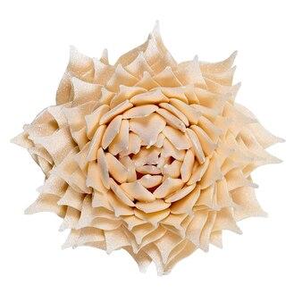 白い表面に分離されたチョコレートの花。