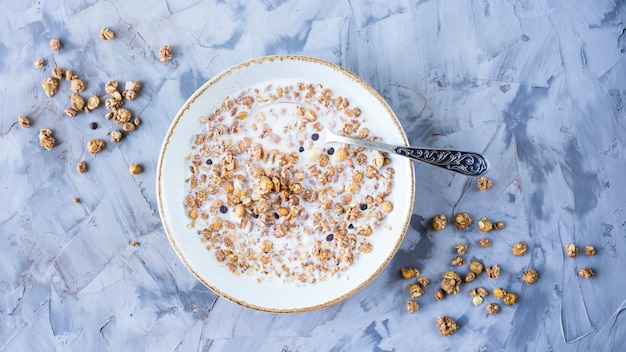 Chocolate muesli with milk in a plate on a gray table