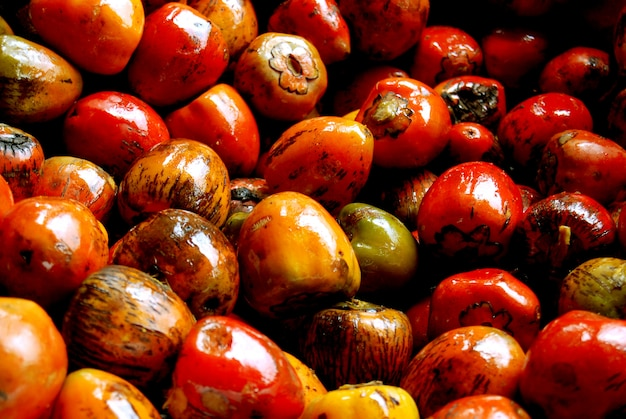 Chontaduro tropical fruit