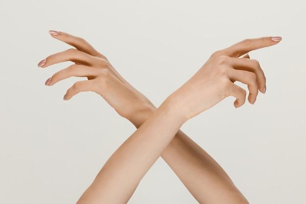 正しい方法を選択する。灰色のスタジオの背景に分離されたタッチを取得するジェスチャーを示す男性と女性の手。人間関係、関係、感情またはビジネスの概念。