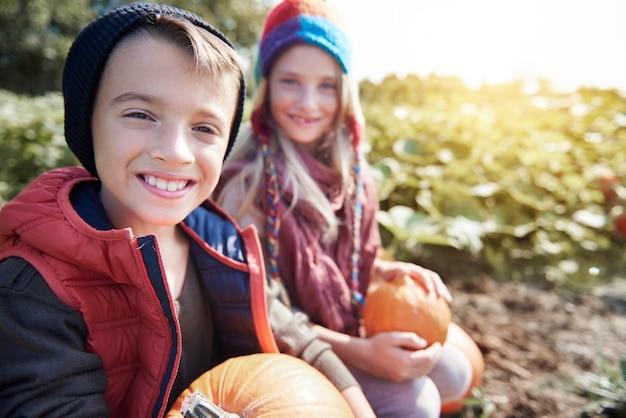 Choosing the perfect pumpkin for halloween
