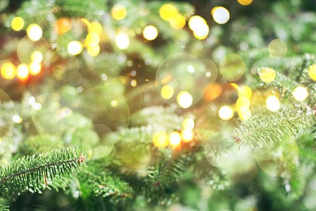 녹색 크리스마스 트리와 황금빛 보케, 부드러운 흐릿한 초점의 크리스마스와 새해 배경