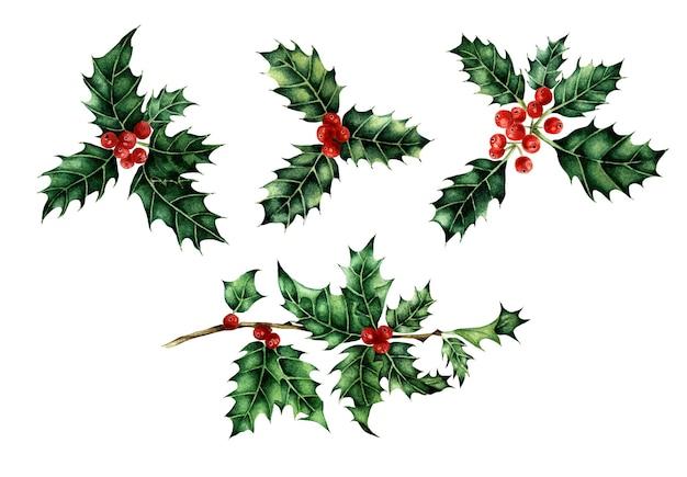 Рождество и новый год декоративные элементы символ холли ягоды набор акварель иллюстрации изолированные
