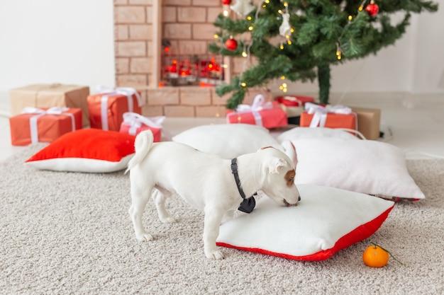 クリスマスとペットのコンセプト