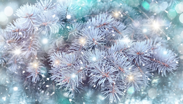 크리스마스 배경, 크리스마스 트리의 크리스마스 트리, 떨어지는 눈과 반짝이가 있는 휴일 배경. 새 해 겨울 bokeh 예술 디자인, 크리스마스 장면
