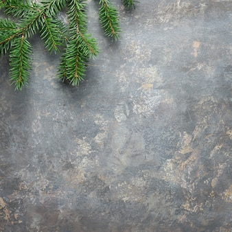 Christmas background, square composition on dark textured board with natural green fir twig. flat lay, top view from above..