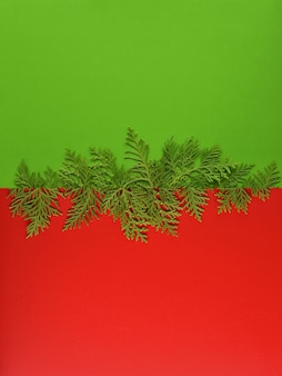Christmas background template with frame of fir branches in green color background.
