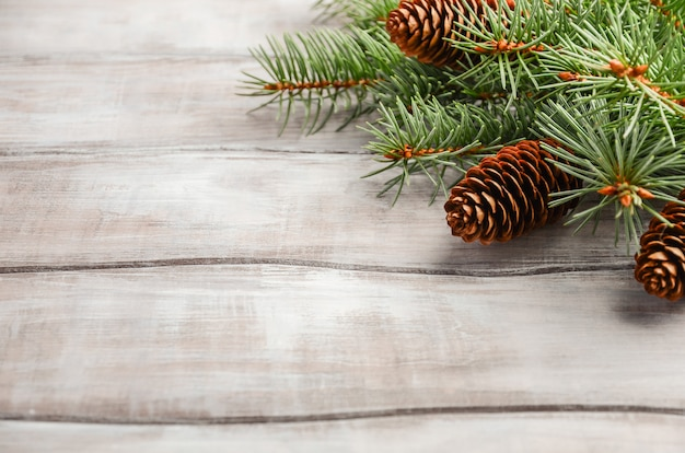 Christmas background with fir branches and cones.