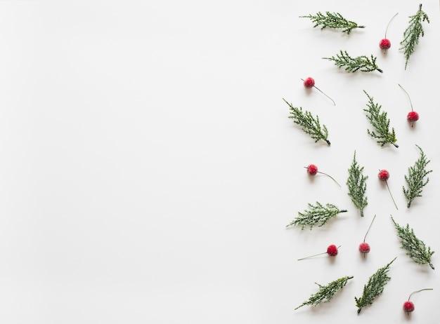白い背景の上にモミの枝の木pineconeとクリスマスの背景。