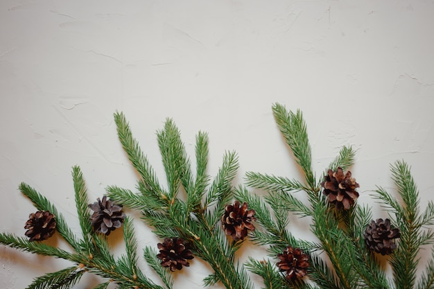 Christmas background with fir tree branch and cones.