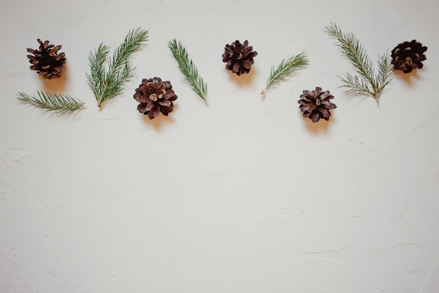 Christmas background with fir tree branches and cones.