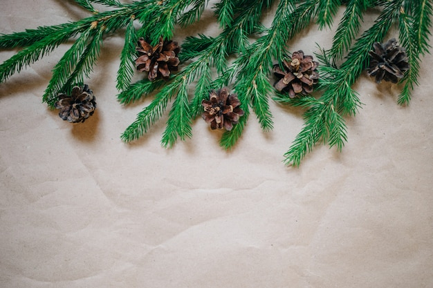 Christmas background with fir tree and cones.