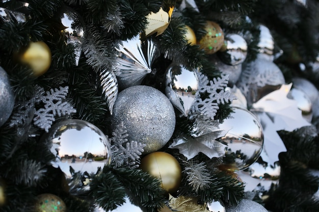 Christmas ball hang on green pine tree new year party background .