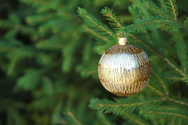 Christmas ball hanging on fir tree branch